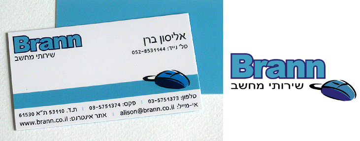 Logo and Branding for Brann Computer Services